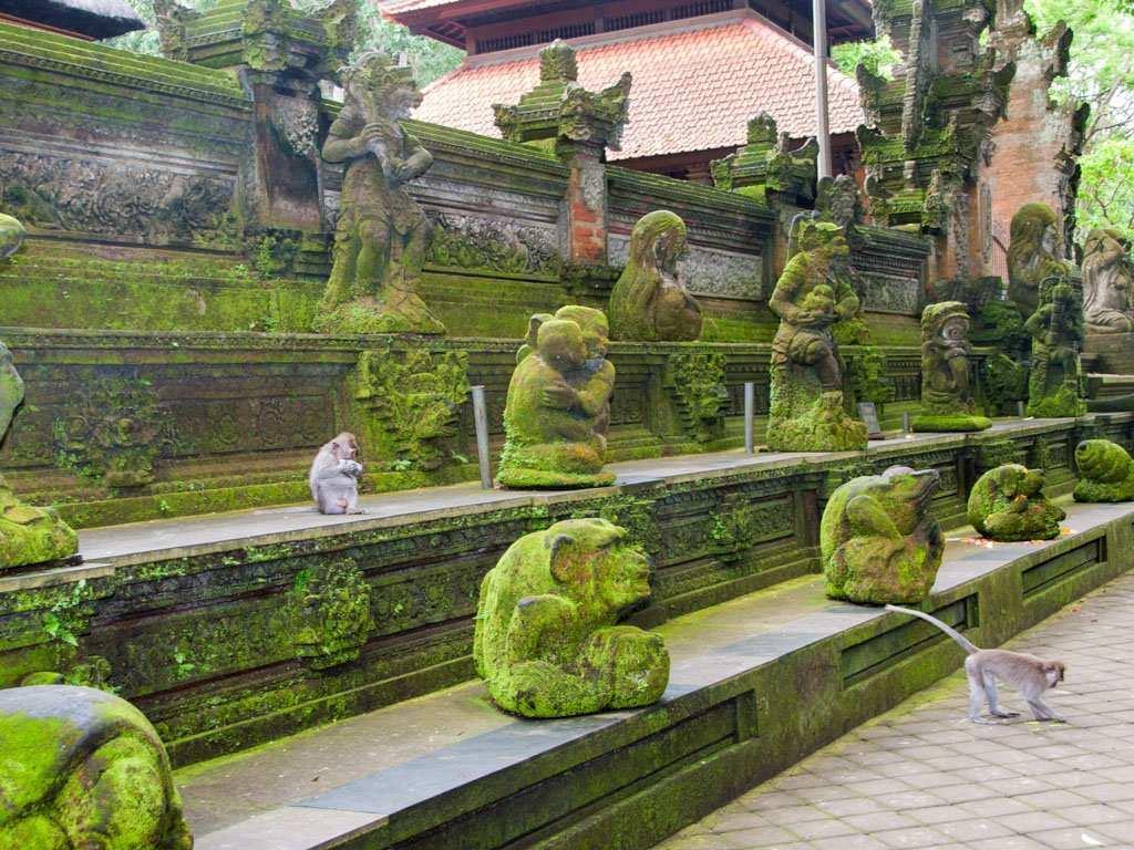 Ubud - Bali Turu