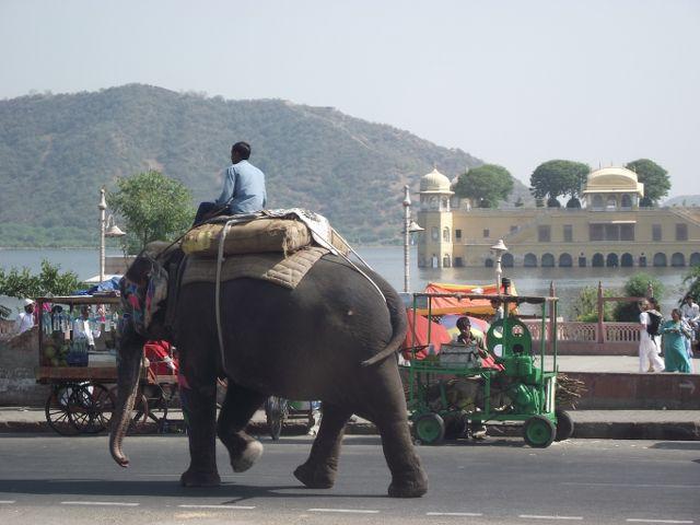 Hindistan & Nepal Turu Delhi, Hindistan