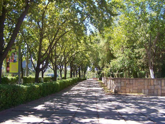 İpekyolu & Orhun Kitabeleri Turu Taşkent, Özbekistan