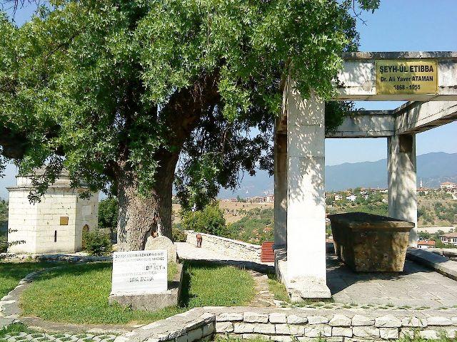 Bitinya Turu (Sinop - Kastamonu - Safranbolu) Safranbolu